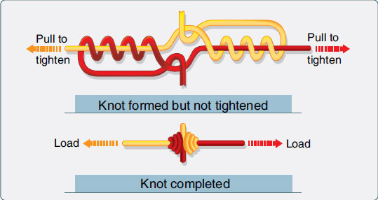 Figure 3-29. The splice knot can be used to join two pieces of rib lacing cord.