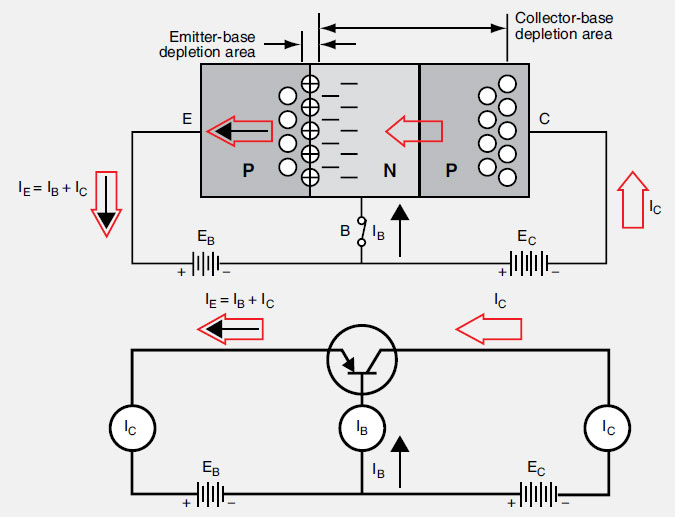 Figure 11-27. The effect of applying a small voltage to bias the emitter-base junction of a transistor (top). A circuit diagram for this same transistor (bottom).