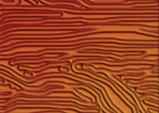Figure 8-20. Example of wrinkling.